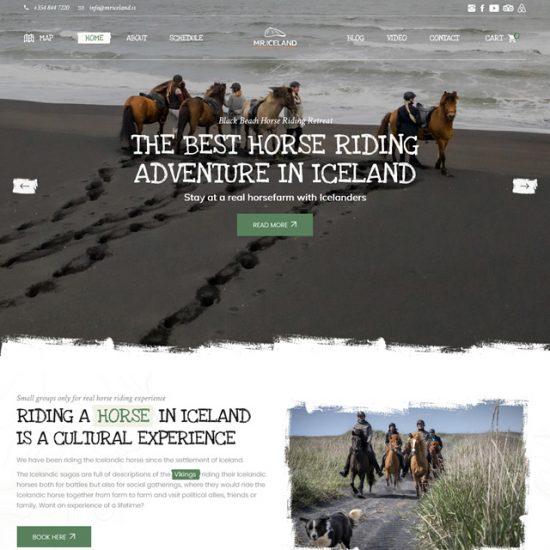 Sito web Mr Iceland